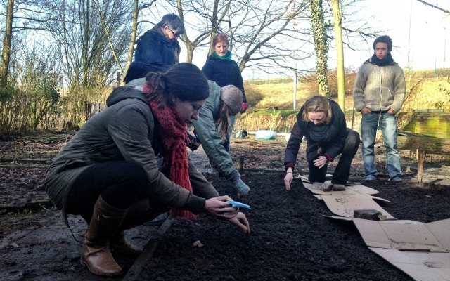 February 2013: Planting Phacelia in the Biodynamic Bed (Photo: Jennifer Lenhart)
