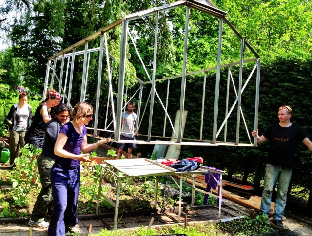 June 2013: We brought in an old greenhouse, to stay warm for the winter and to start our seeds. (Photo: Jennifer Lenhart)