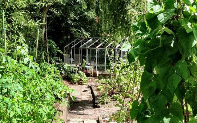 July 2013: Garden is going strong (Photo: Jennifer Lenhart)