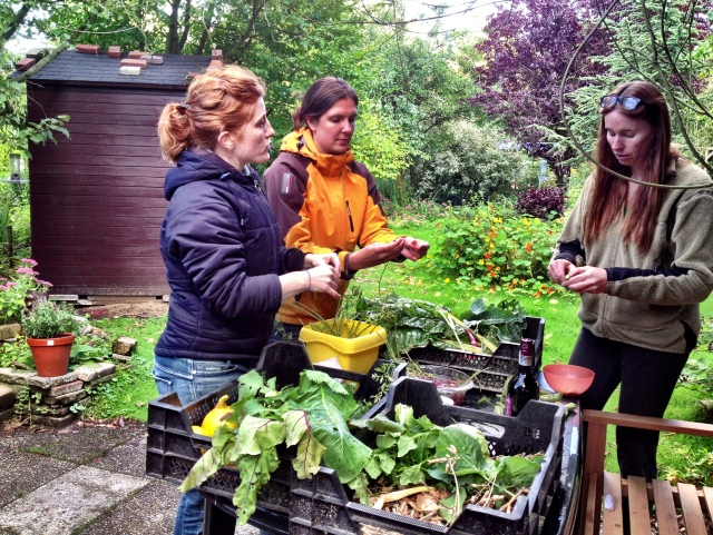 September 2013: End of year Harvest Garden party (Photo: Jennifer Lenhart)