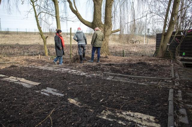 March 2013: Garden planning (Photo: Barbara Pavie)