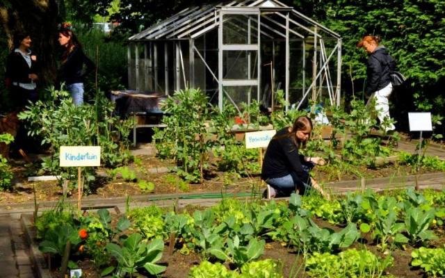 June 2013: Preparing for the Garden Party (Photo: Mariko Kihira)