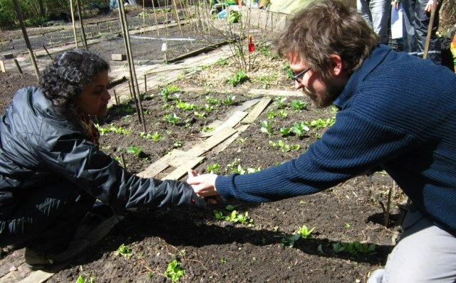 permaculture planting yvon 29 april