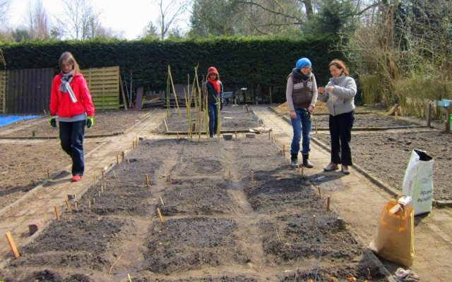 planting the heritage bed yvon 9 april
